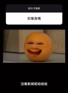 被网友问现在是否单身 罗志祥回应:你没看新闻吗