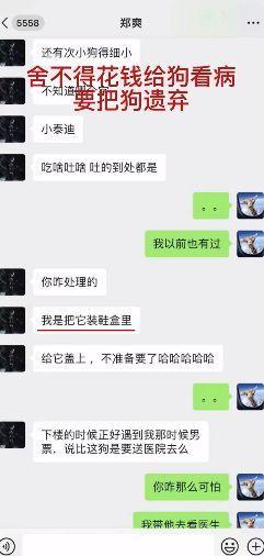 郑爽日薪208万被曝为省钱遗弃生病狗 吃东西不结账