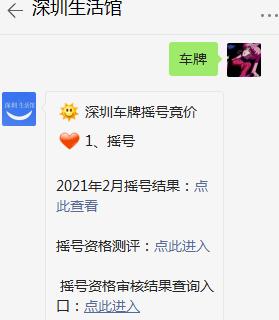 深圳居民个人可以一起进行车牌摇号和竞价吗?