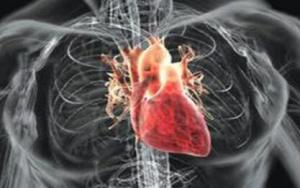 心肌炎有什么症状 心肌炎该如何预防