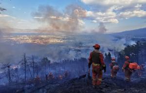 过火面积约48公顷!云南大理森林火灾明火扑灭