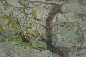 """是画,亦是诗——著名画家张淳大宝以如诗的新视觉语言""""对画""""大自然"""