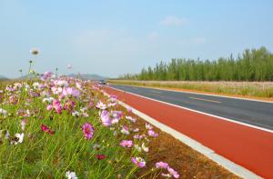 """临沂""""爱尚沂南 红色之旅""""环线获评2020中国""""十大最美农村路"""""""