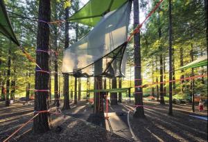 帐篷营地,将成为乡村旅游的新爆点
