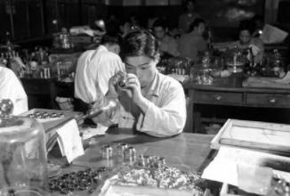 50年代日本经济复苏,50年代的日本什么样子?