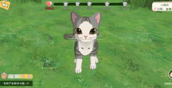 小森生活撸猫掉猫毛球方法介绍