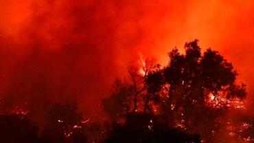 山火在美国加州快速蔓延