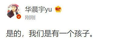 华晨宇承认已婚生子 华晨宇承认与张碧晨已婚生子