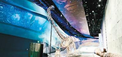 """武汉自然博物馆展示的中加马门溪龙化石、硅化木和""""龙""""足迹化石墙。本文图片均由长江文明馆(武汉自然博物馆)提供"""