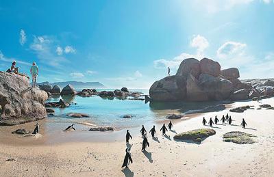 南非大使欢迎中国游客(采访手记)