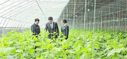 """青岛银行再度上榜""""中国服务业500强"""",较上年提升11个位次"""