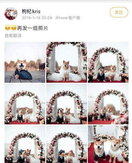 郑爽张恒疑似婚礼两周年?女方被扒疑曾发结婚感言