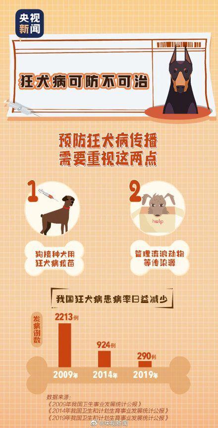 世界狂犬病日:近100%病死率这些知识要牢记