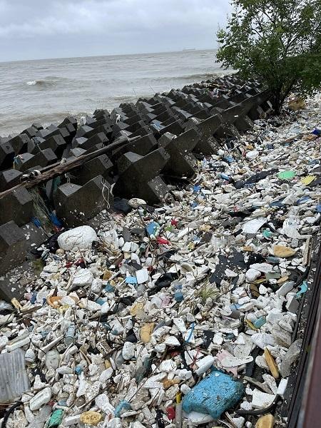 图说:江中大量垃圾被冲上堤岸 采访对象供图(下同)