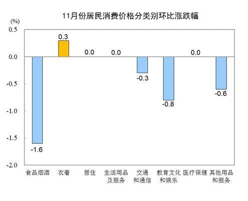 中国11月CPI同比下降0.5%