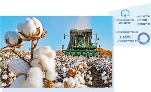 中国棉花:稳产销 树标准