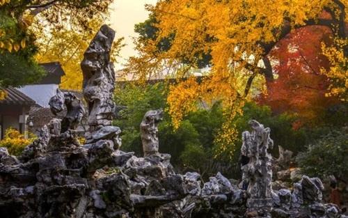 678年 苏州狮子园的禅意与文心