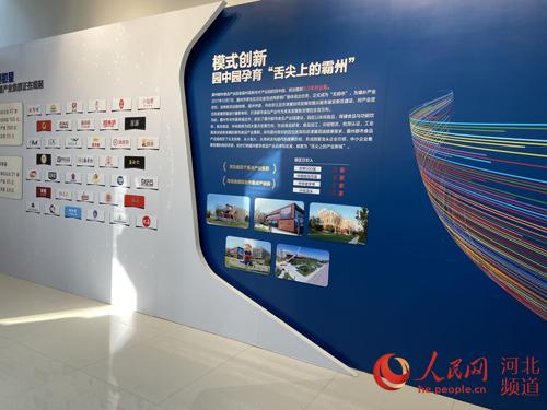 河北霸州:助力京津冀协同发展 打造都市休闲食品产业新名片