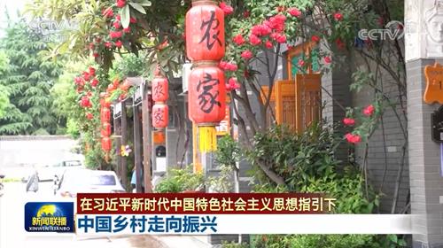 【在习近平新时代中国特色社会主义思想指引下】中国乡村走向振兴