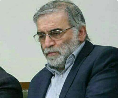 """▲""""伊朗核研究之父""""法赫里扎德。资料图。图片来源:新京报网"""