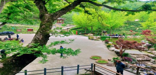 安徽首批省级森林康养基地名单公布