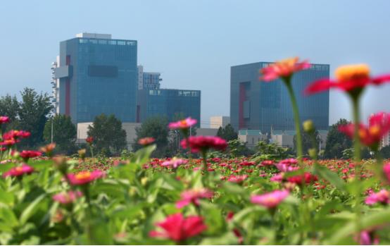 第十一届北京国际电影节电影嘉年华即将启动