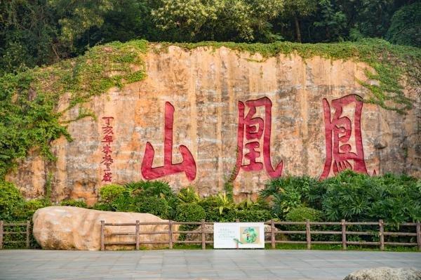 深圳凤凰山2021年春节正常开放 元宵节对森林公园进行限制入园管理