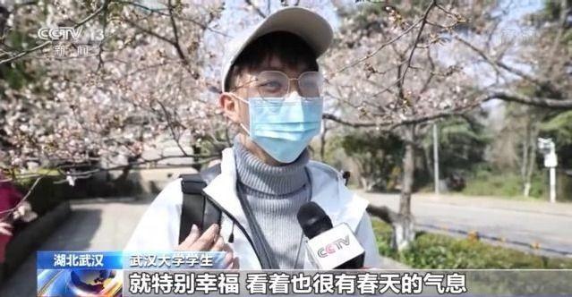 """花开了!武大邀请抗疫医护人员共赴""""樱花之约"""""""