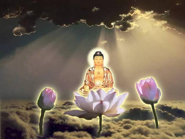 【消灾】是什么意思?佛教里的消灾