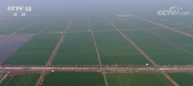 我国今年将新建1亿亩高标准农田 每亩粮食平均增产100公斤