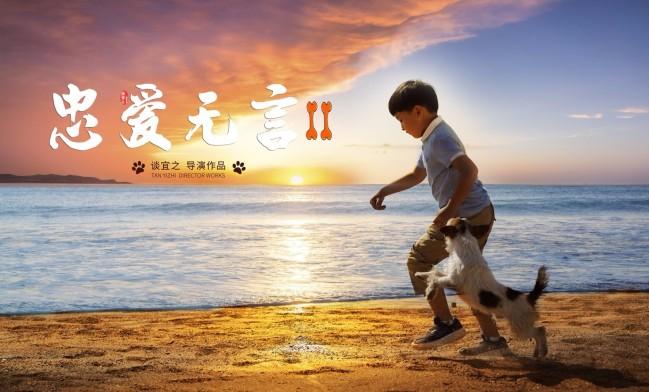 春来相见 金鸡奖提名电影《忠爱无言2》定档2021年3月