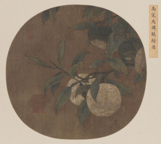 清泉流齿:和苏轼一起吃橘子赏橘树 既香且甜