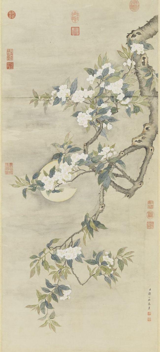 清 邹一桂 《画梨花夜月》轴 台北故宫博物院藏