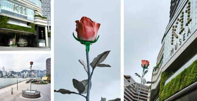 """8.5米巨型玫瑰诠释浪漫基因 再筑""""品位高地"""""""