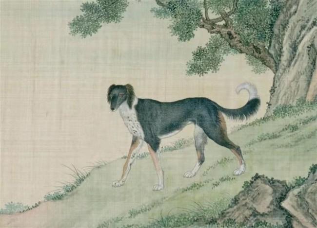 清乾隆 余省、张为邦等绘《兽谱图册——犬》局部 北京故宫博物院藏