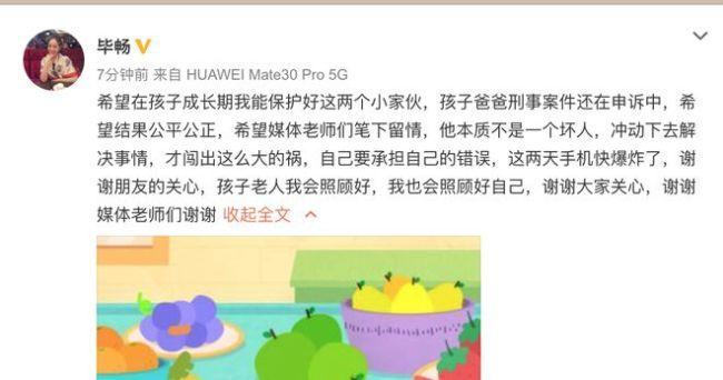 """老公强迫他人贷款购车获刑14年 """"王小蒙""""毕畅:他不是坏人"""