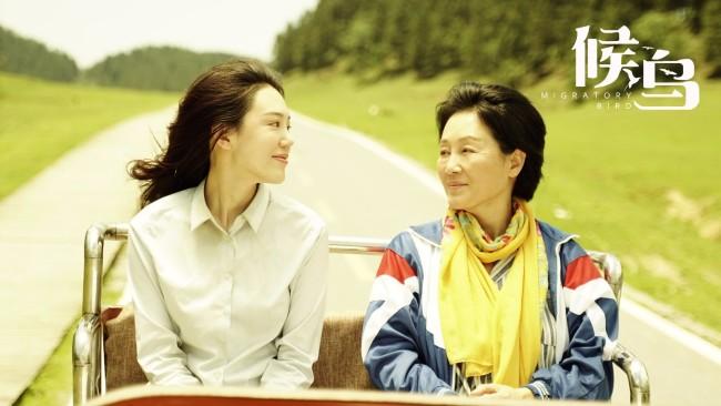继《李焕英》后的又一母女催泪片《候鸟》430上映