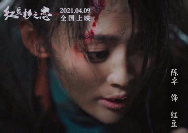 电影《红豆杉之恋》上映 实力演员陈卓领衔主演