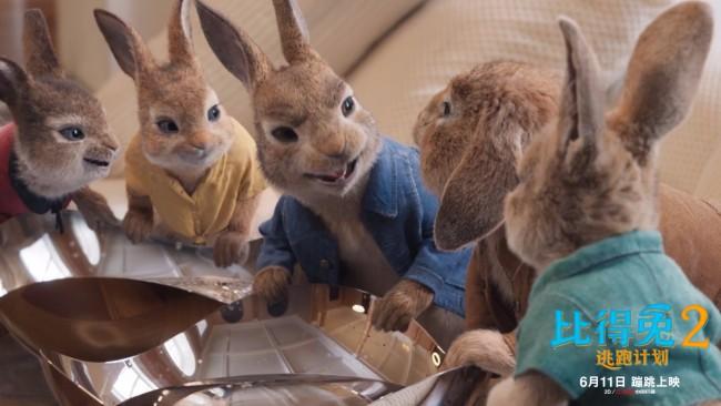 《比得兔2:逃跑计划》郭麒麟配音版预告 611吸兔