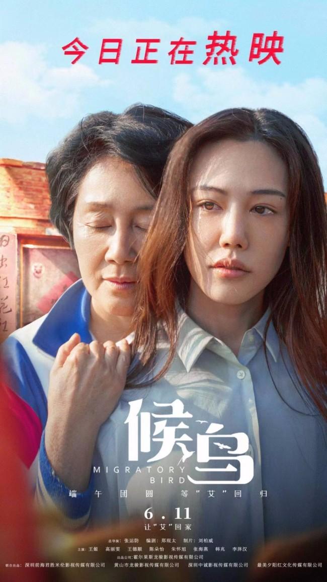 亲情大片《候鸟》今日上映 推广曲MV看哭万千观众