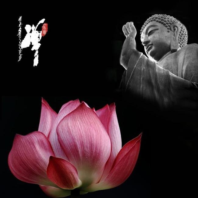 【往生】是什么意思?佛教里往生的解释