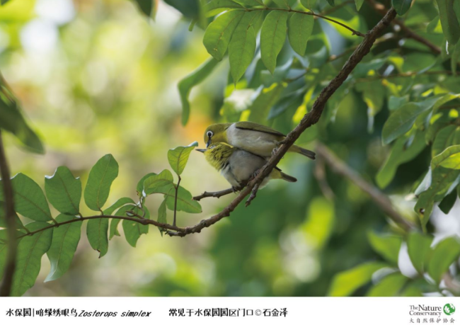 深圳水保园2021年2月16日-17日正常对外开放 暂停团队预约