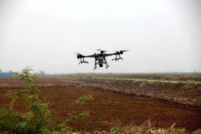 广东江门春种播种面积约210万亩 其中水稻计划播种面积125万亩