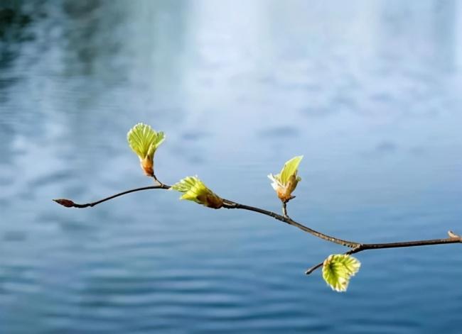古人怎么过立春?祭祀春神和祖先,还要写诗