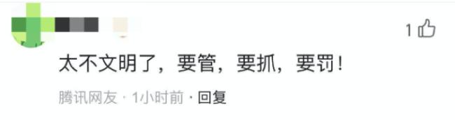"""少林寺竹林被上百游客刻字,还有人吊在上边""""荡秋千""""!网友怒了"""