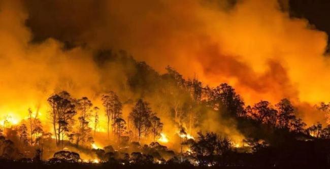 应对气候变化表现不及格!澳大利亚总理莫里森在气候变化雄心峰会上失去发言权