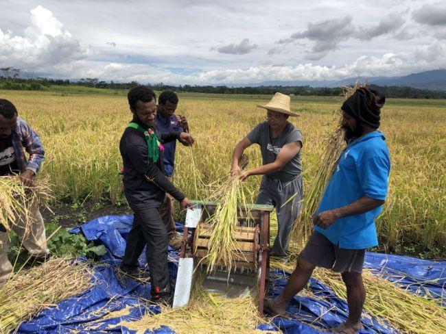 看到野草能长出蘑菇、荒地能变成稻田,他们直夸厉害!