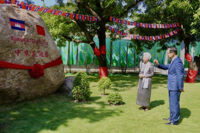 两棵芒果树见证的中柬友谊