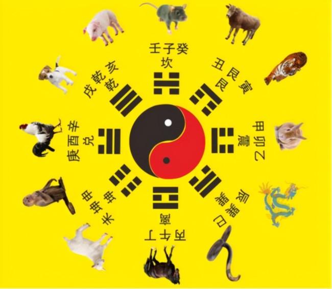 牛虽然位居第二却自带王者之气,牛为什么在12生肖里排第2位