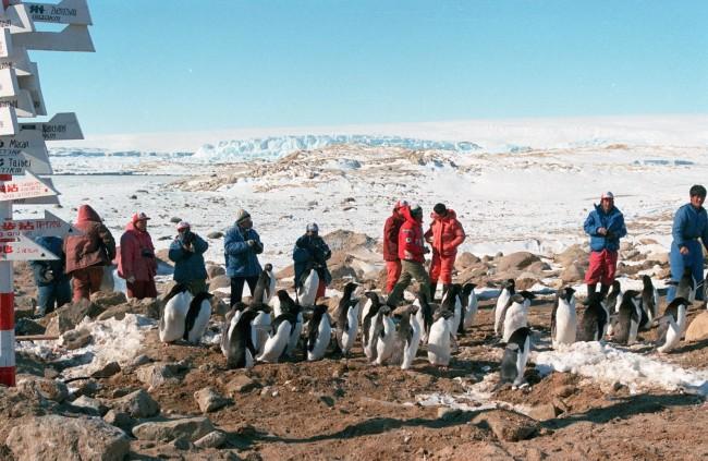 百年瞬间丨南极中山站建成